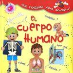 El cuerpo humano con ventanas 2